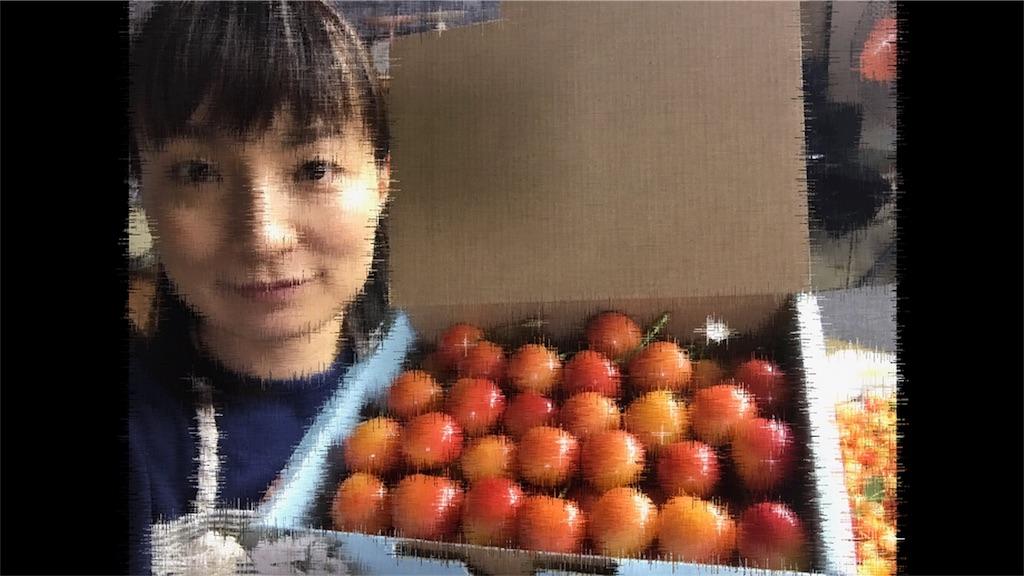 f:id:yutiko:20180726140344j:image